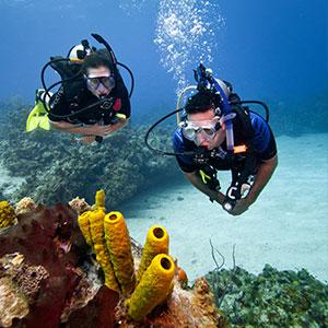 buoyancy-01