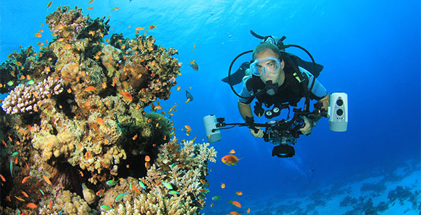 featured-palau-yap-dive-trip