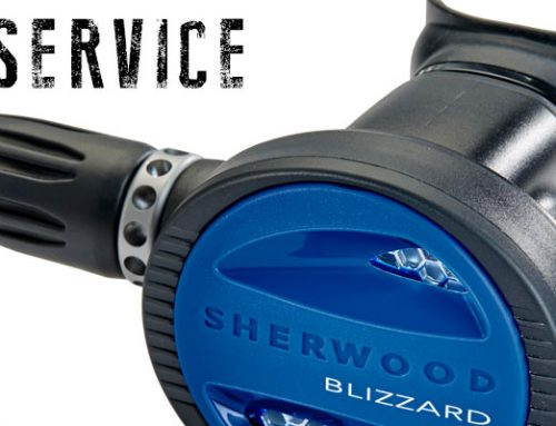 Service your gear before your next dive trip