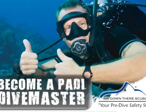 Divemaster class starts March 28