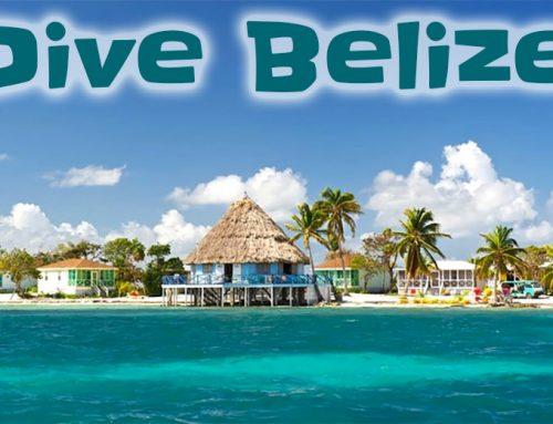 Turneffe Atoll – Belize