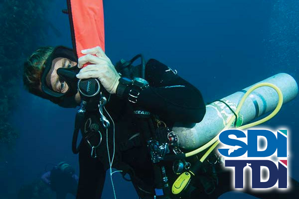 Solo Diver Class this Summer